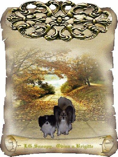 An den Beitrag angehängtes Bild: http://img7.dreamies.de/img/156/b/qhujbquvs2d.jpg