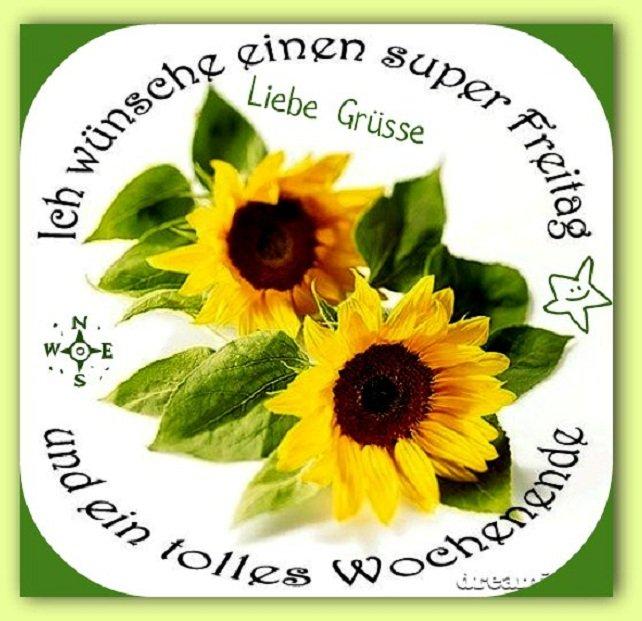 An den Beitrag angehängtes Bild: http://img7.dreamies.de/img/159/b/79mutheq591.jpg
