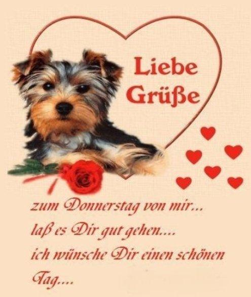 An den Beitrag angehängtes Bild: http://img7.dreamies.de/img/568/b/afrm71af5ya.jpg