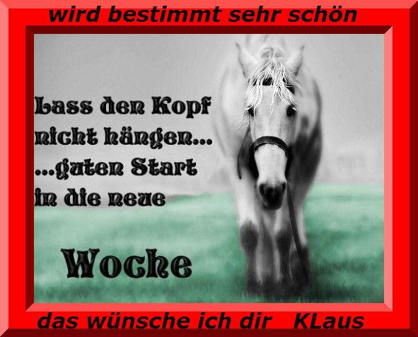 An den Beitrag angehängtes Bild: http://img7.dreamies.de/img/634/b/v6srmv7tbc5.jpg