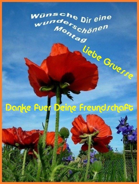 An den Beitrag angehängtes Bild: http://img7.dreamies.de/img/692/b/kw24m1qt1nc.jpg