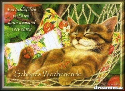 http://img7.dreamies.de/img/739/b/2cw0fkbttdz.jpg