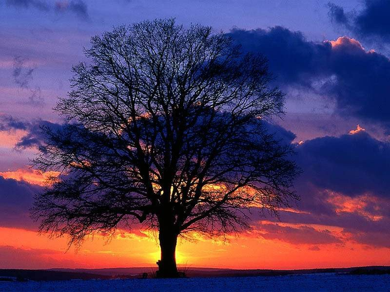 Izlazak i zalazak sunca 7vxqvmjn4e0