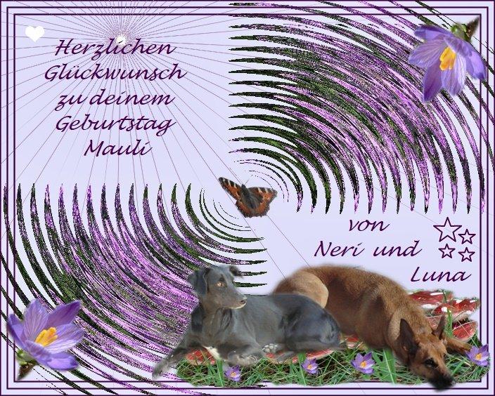 An den Beitrag angehängtes Bild: https://img7.dreamies.de/img/620/b/gq9hh5709yb.jpg