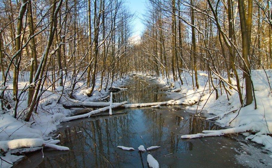 Zimski pejzaži-Winter landscapes - Page 13 Us805r4ydmn
